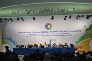 CoP 12 Working Group II